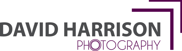 logo got DH photography